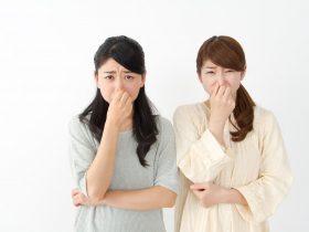 歯周病の臭いってどんな臭い?特徴・原因・消す方法とは?
